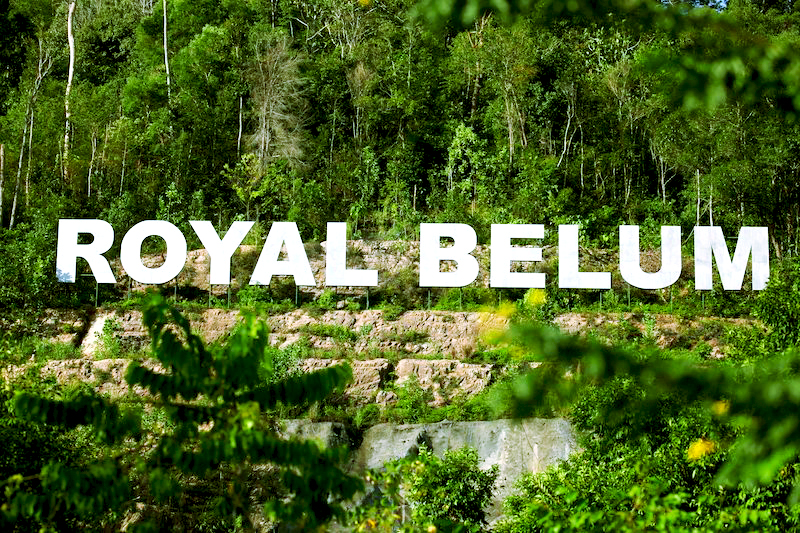 Embrace the untouched sanctuary of Royal Belum cover image