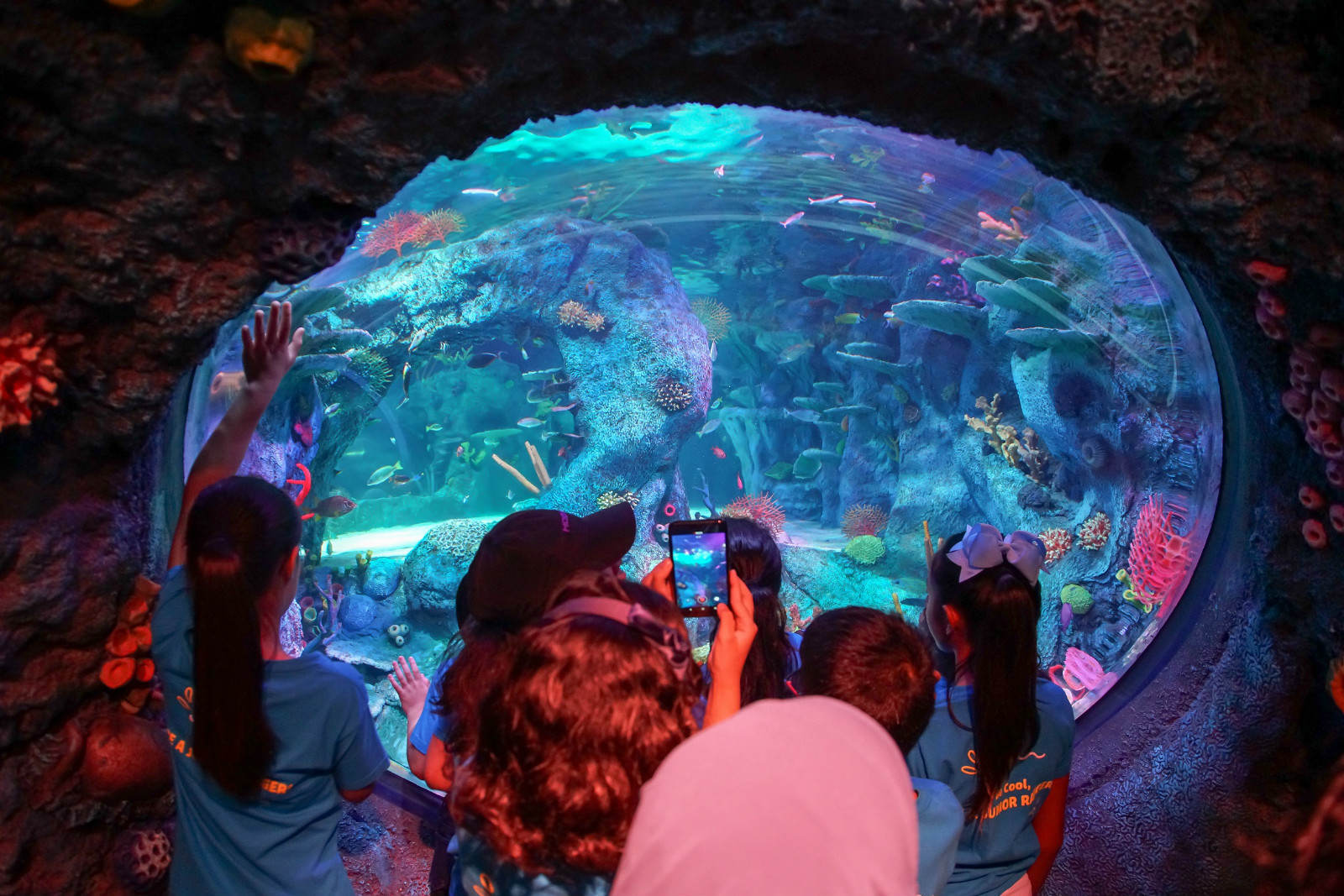 SEA LIFE, THE WORLD'S LARGEST AQUARIUM BRAND DEBUTS IN MALAYSIA news cover image