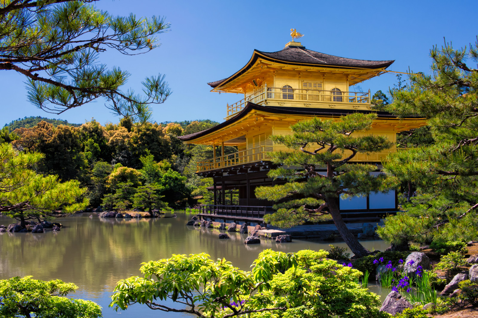 A QUICK TOUR OF JAPAN FROM YOUR HOME  Article cover photo